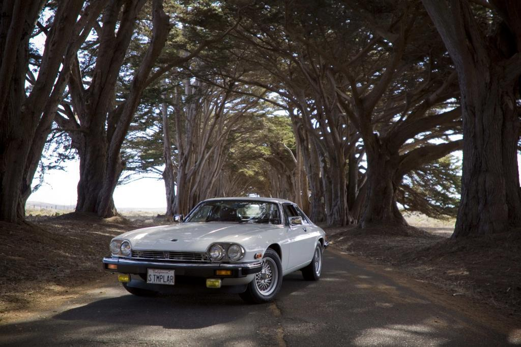Rhett's 1988 Jaguar XJ-S coupé in Glacier White